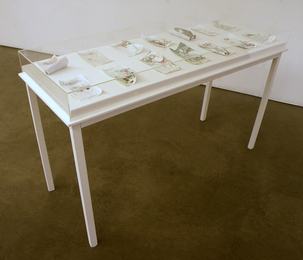 Repeat Perscriptions, 2013, 14 drawings on wood and perspex table, 134cm long x 51cm wide x 82 cm high
